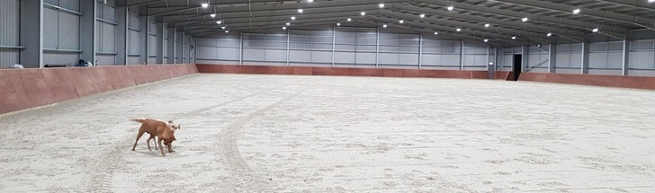 Newbold Verdon Equestrian Centre Contact Us Leicestershire